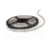 BOBINA STRISCIA 300 LED 5630 5 METRI 5M 12V LUCE BIANCO FREDDA CASA STRIP POWER